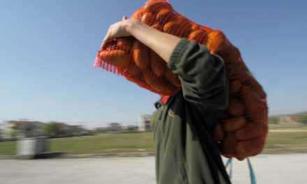 Δυτική Ελλάδα: Μεγάλη απάτη με πατάτες που…. δεν ήταν ελληνικές
