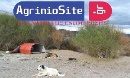 Αγρίνιο: Διαμαρτυρίες για την μεταφορά αδέσποτων από τον Δήμο στην περιοχή της Στράτου!