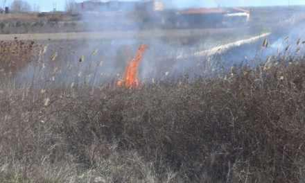 Καίγεται καλαμιώνας στα Καλύβια!