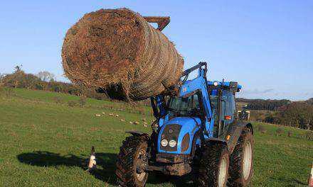 Μητρώο Αγροτών και Αγροτικών Εκμεταλλεύσεων
