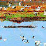 Στο επίκεντρο ο Αμβρακικός Κόλπος στις 27 και 28 Απριλίου